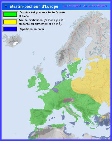 Migration (Martin-pêcheur d'Europe)